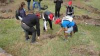 Divulgação e Educação Ambiental