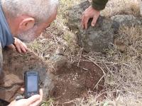 D6 - Monitorização espécies malacofauna